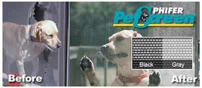 dogscreen 345101127